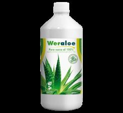 Aloe Vera – Weraloe