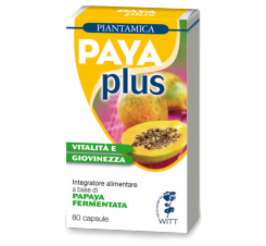 Payaplus