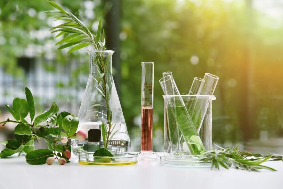 La rivoluzione dei cosmetici: naturali, trasparenti e piacevoli