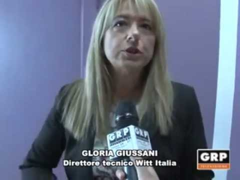 Interviste ai manager Witt Italia