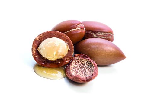 L'olio di Argan: uso alimentare e cosmetico